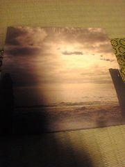 清春(黒夢SADS)VINNYBEACH DVD付き