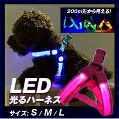 LED 発光 ハーネス 幅2.5cm切替3パターンサイズL ブルー