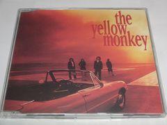 THE YELLOW MONKEY/���Ȃ�C�ƃT���V���C�� [Maxi]