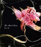 THE BACK HORN�u���̉ԁv�ޥ�ޯ�ΰ� CD-EXTRA�d�l