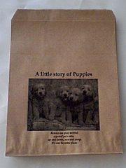 R70サイズ平袋★リトルストーリー20枚☆キュート紙袋