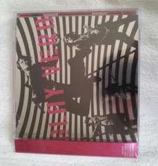 初回限定盤 VERB GLAY 2枚組 DVD付き 美品