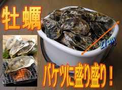 ■□殻付き牡蠣 バケツにいっぱい詰め込んで!□■