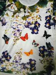 和柄 花鳥風月 花と蝶