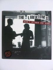 THE LIBERTINES CAN'T STAND ME NOW リバティーンズ EP