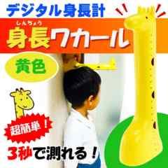デジタル身長計 身長ワカール 黄色 身長測定器 EX-2978 Ha026