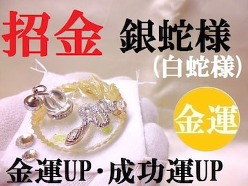 銀蛇様/白蛇★金運・成功運・幸福運UP★開運招金/パワーストーン/占