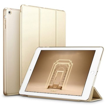 iPad Mini ケース クリア ゴールド