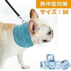 ペット用 クールバンダナ 熱中症対策 犬用 冷却 M 1/BY7