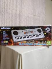 ビックファン49キーボード CHAMPAIN色
