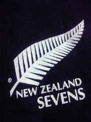 adidas アディダス ラクビー ニュージーランド オールブラックス Tシャツ ブラック Lサイズ