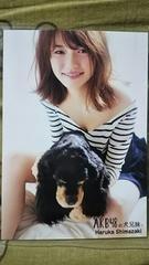 送料込み〓島崎遥香〓AKB48の犬兄妹〓購入特典生写真