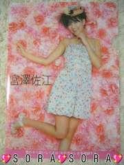 【AKB48・宮澤佐江】2011年カレンダー特典♪上質クリアファイル