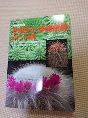 美品 サボテン・多肉植物 ポケット事典 NHK出版