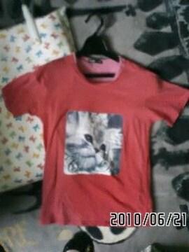 ロゴ&猫イラストプリントTシャツ