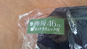 【欅平46くじ】ボックスリュック