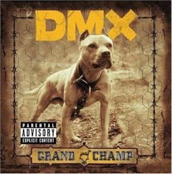 大人気 dmx hip-hop grand champ
