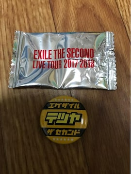 ROUTE 6・6 缶バッジ EXILE THE SECOND TETSUYA