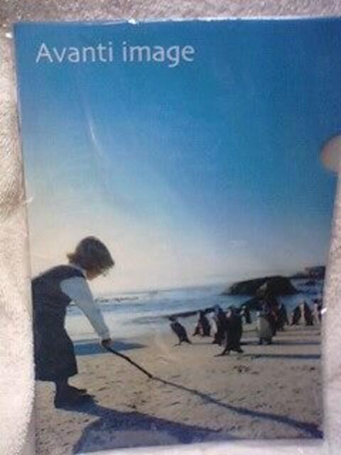未使用 お買い得 クリアファイル2枚1組あひる/アヒル海辺のペンギン\100 < ペット/手芸/園芸の