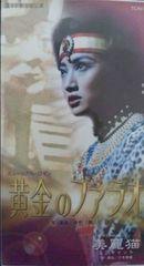 宝塚星組☆黄金のファラオ/美麗猫 稔幸 絵麻緒ゆう