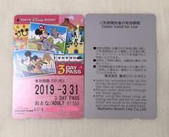 TDR東京ディズニーリゾートライン大人3dayフリーパスTDS/TDL2枚