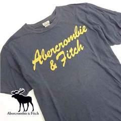 Abercrombie & Fitch(アバクロンビー&フィッチ)TシャツN07