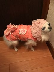 犬服 ペット服 フリル立体お花パールポシェット付き 新品タグ付