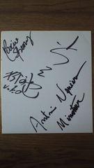 【超激レア】小川直也&ノゲイラ直筆寄せ書きサイン色紙