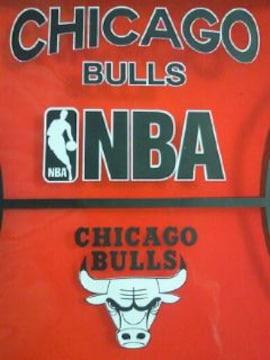 アメリカ バスケットボール NBA シカゴ ブルズ 透明 ポーチ BAG バッグ レッド