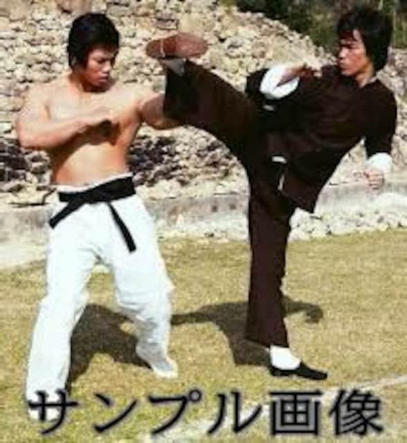 李小龍シネマ大全集・3 ブルース・リー < タレントグッズの