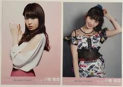 AKB48 Green Flash 劇場盤 小嶋陽菜 生写真 コンプ