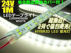 超激白 カバー付 LEDテープライト 蛍光灯 LEDライト 24V 1M/船舶