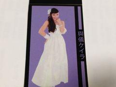 AKB48 與儀ケイラ シール ステッカー 新品
