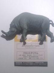 ◆ブロントテリウム/チョコラザウルス★DINOTALES/海洋堂/UHA味覚糖