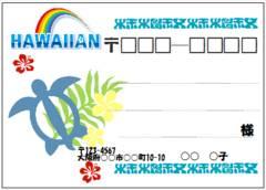 ■157(宛名シール)8枚■ホヌ(ハワイアン)