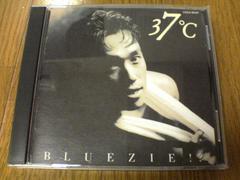 ブルージーCD 37℃ BLUEZIE!? 廃盤