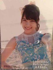 激安!☆ラブラドールレトリバー/通常盤生写真☆AKB48.入山杏奈☆
