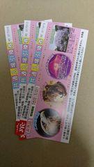 上野動物園、多摩動物公園、葛西臨海水族園 共通入場引換券 3枚