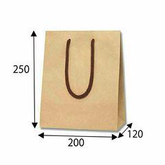 ☆新品☆手提紙袋(無地黒色)100枚(ラッピング、業務用等に…)