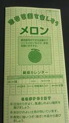 家庭菜園、メロン栽培方法冊子