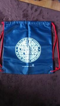 ハロープロジェクト・スポーツフェスティバル2004バッグ(送料無料)