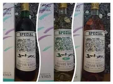 信州 桔梗ヶ原 五一ワイン3本セット