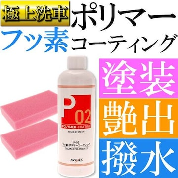 P02 フッ素ポリマーコーティング スポンジ付 塗装保護剤 ro014